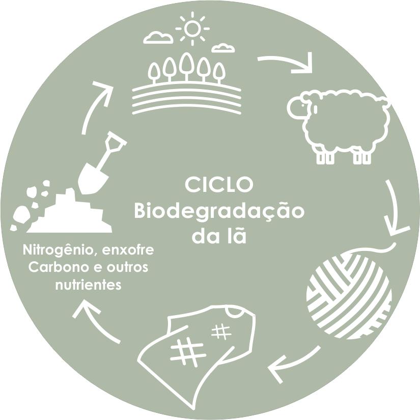 ciclo biodegradavel V2 - Ciclo consciente